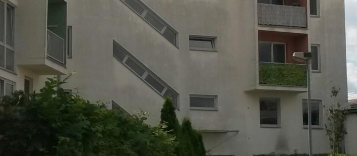 Odstraňění plísně z bílé fasády Brno