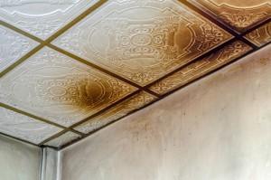 Jak odstranit houby ze stěn?
